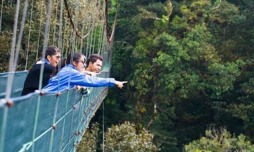 hanging-bridges